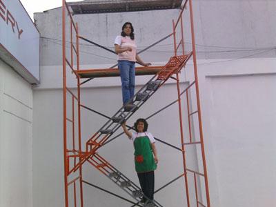 Andamio andino tubular con escalera alquiler de andamios for Escaleras y andamios